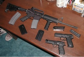 Firearms and Weapons Offenses - Guns